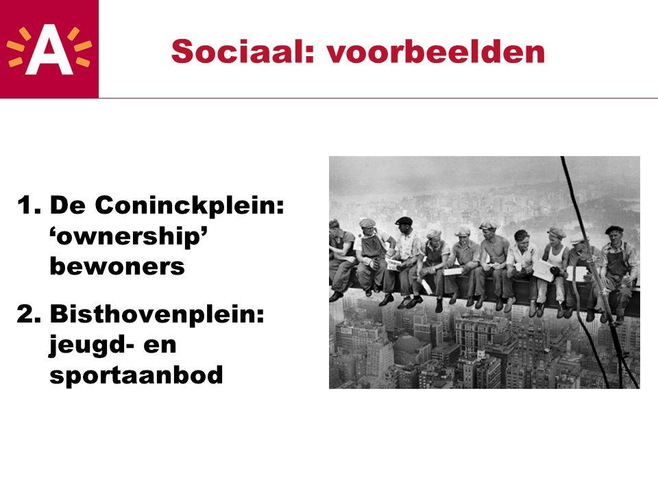 1.De Coninckplein: 'ownership' bewoners 2.Bisthovenplein: jeugd- en sportaanbod Sociaal: voorbeelden