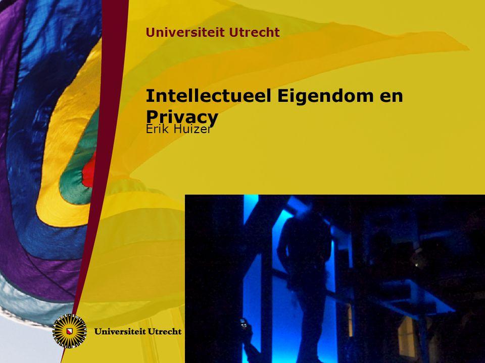 Intellectueel Eigendom en Privacy Erik Huizer