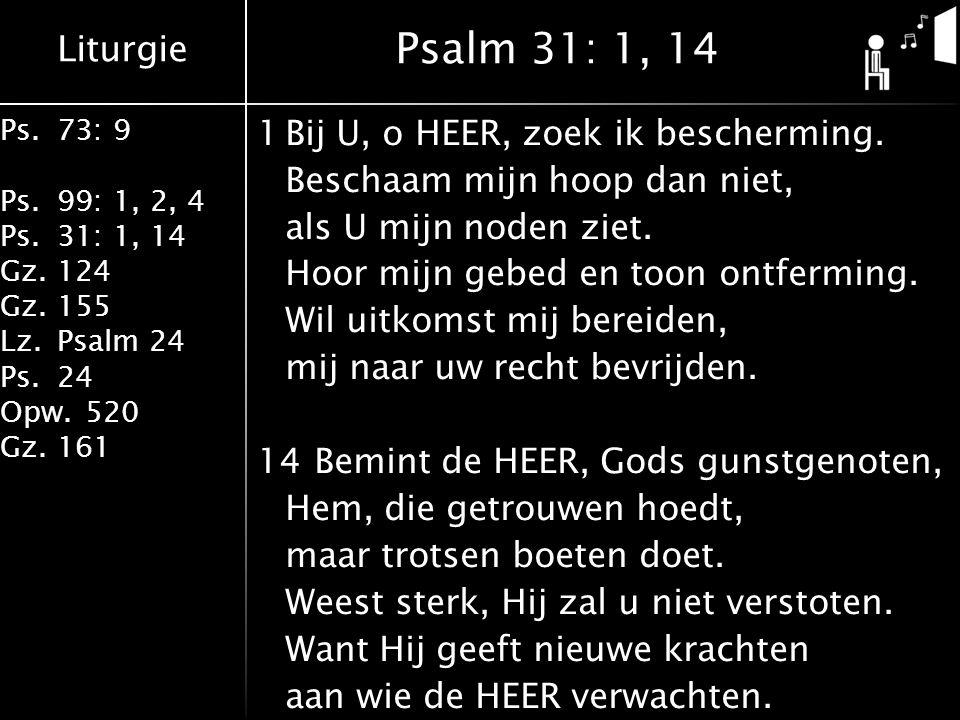 Liturgie Ps.73: 9 Ps.99: 1, 2, 4 Ps.31: 1, 14 Gz.124 Gz.155 Lz.Psalm 24 Ps.24 Opw.520 Gz.161 1Bij U, o HEER, zoek ik bescherming. Beschaam mijn hoop d