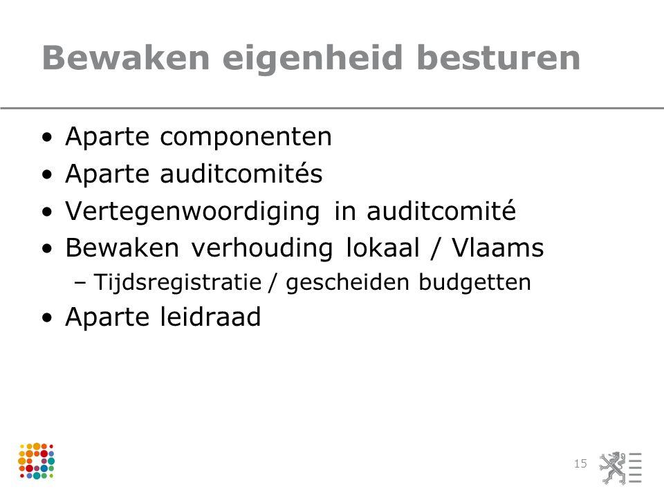 Bewaken eigenheid besturen Aparte componenten Aparte auditcomités Vertegenwoordiging in auditcomité Bewaken verhouding lokaal / Vlaams –Tijdsregistratie / gescheiden budgetten Aparte leidraad 15
