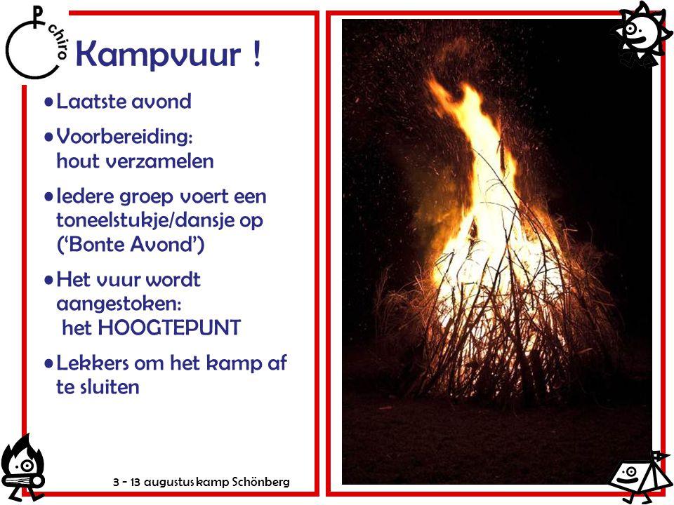 3 - 13 augustus kamp Schönberg Kampvuur ! Laatste avond Voorbereiding: hout verzamelen Iedere groep voert een toneelstukje/dansje op ('Bonte Avond') H