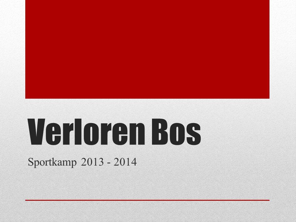Informatie Verloren Bos, Nijverheidsstraat 17 Lokeren Hemelvaart (29 mei – 1 juni) 53 plaatsen
