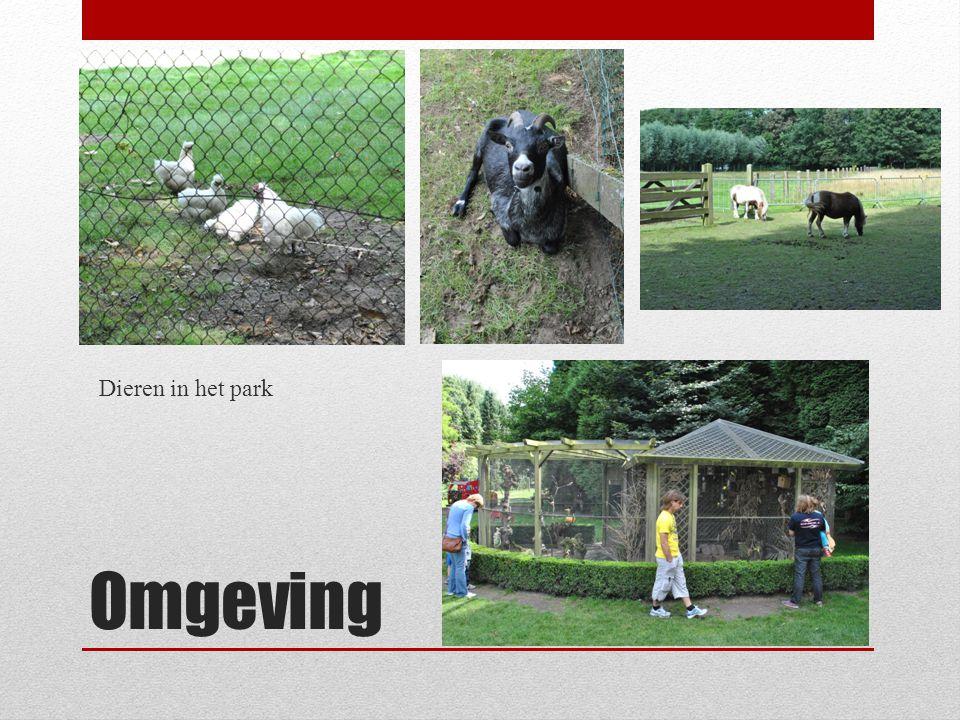 Omgeving Dieren in het park
