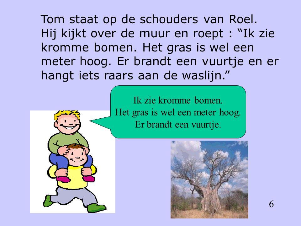 Tom staat op de schouders van Roel. Hij kijkt over de muur en roept : Ik zie kromme bomen.