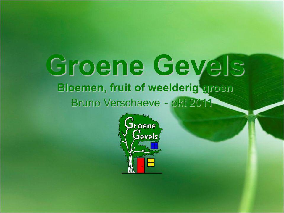 Groene Gevels Bloemen, fruit of weelderig groen Bruno Verschaeve - okt 2011