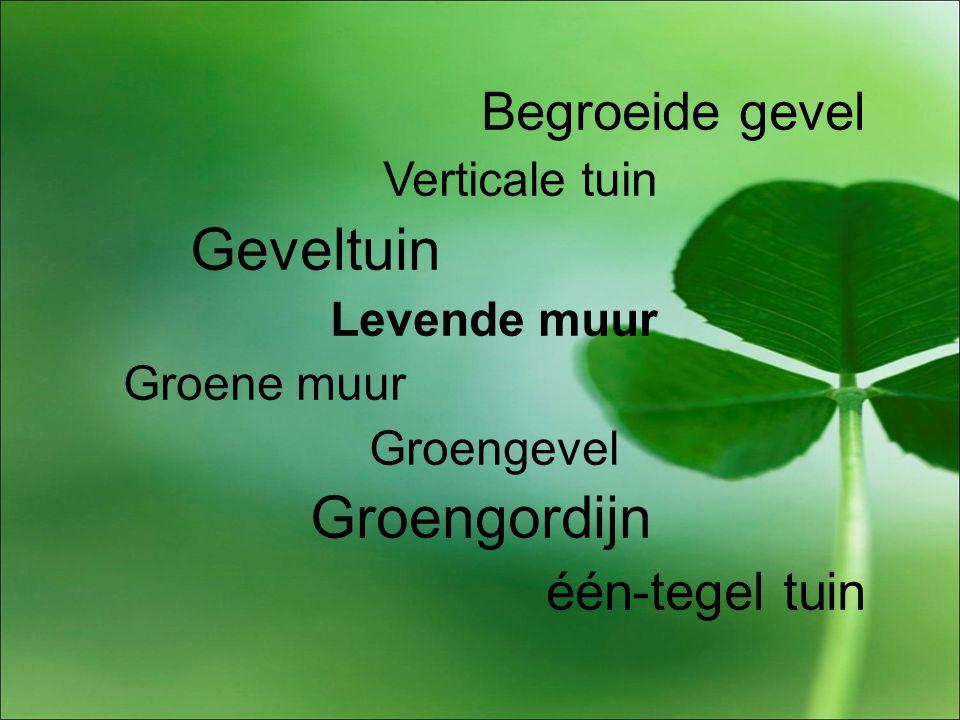 Begroeide gevel Verticale tuin Geveltuin Levende muur Groene muur Groengevel Groengordijn één-tegel tuin