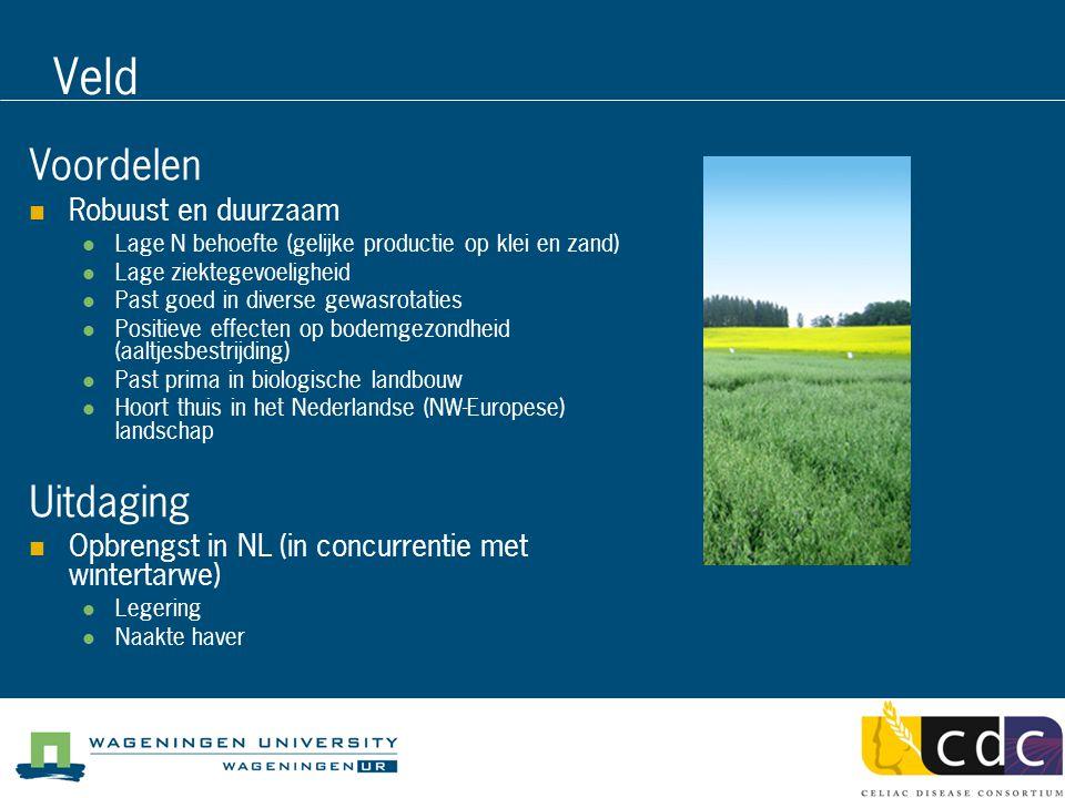 Veld Voordelen Robuust en duurzaam Lage N behoefte (gelijke productie op klei en zand) Lage ziektegevoeligheid Past goed in diverse gewasrotaties Positieve effecten op bodemgezondheid (aaltjesbestrijding) Past prima in biologische landbouw Hoort thuis in het Nederlandse (NW-Europese) landschap Uitdaging Opbrengst in NL (in concurrentie met wintertarwe) Legering Naakte haver