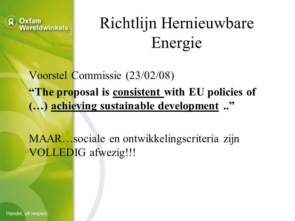 Zuid-dimensie van duurzaamheid vergeten  Beleidsprincipes  Europees Ontwikkelings- en Duurzaamheidsbeleid  Europese Strategie biobrandstoffen  Maart 2007 Europese Raad: -10% doelstelling biobrandstoffen in Richtlijn HE op voorwaarde van duurzame productie -Probleem: geen definitie van duurzame productie