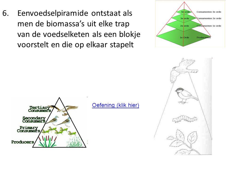 6.Eenvoedselpiramide ontstaat als men de biomassa's uit elke trap van de voedselketen als een blokje voorstelt en die op elkaar stapelt Oefening (klik