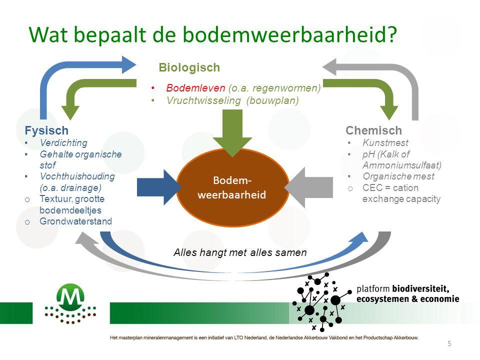 Bodem- weerbaarheid 5 Chemisch Biologisch Kunstmest pH (Kalk of Ammoniumsulfaat) Organische mest o CEC = cation exchange capacity Verdichting Gehalte