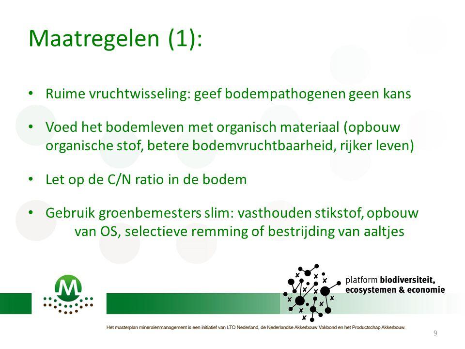 Maatregelen (1): Ruime vruchtwisseling: geef bodempathogenen geen kans Voed het bodemleven met organisch materiaal (opbouw organische stof, betere bod