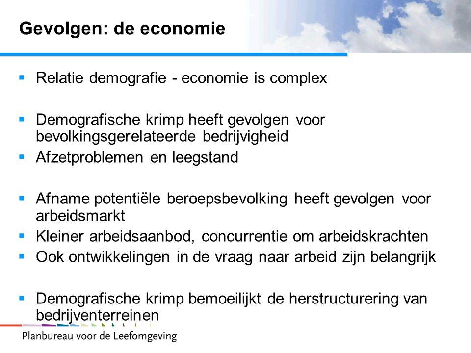 Gevolgen: de economie  Relatie demografie - economie is complex  Demografische krimp heeft gevolgen voor bevolkingsgerelateerde bedrijvigheid  Afze