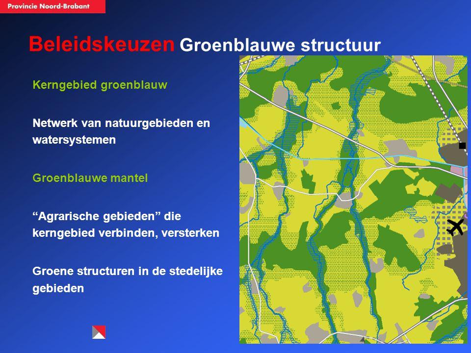 Beleidskeuzen Groenblauwe structuur Kerngebied groenblauw Netwerk van natuurgebieden en watersystemen Groenblauwe mantel Agrarische gebieden die kerngebied verbinden, versterken Groene structuren in de stedelijke gebieden Tilburg Veldhoven