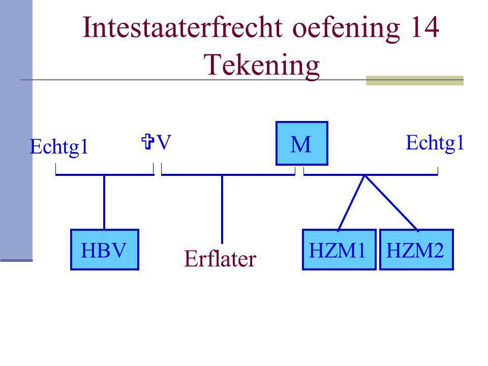 Intestaaterfrecht oefening 14 Tekening Erflater VV M HZM1HBVHZM2 Echtg1