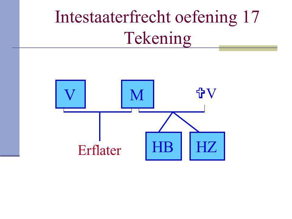 Intestaaterfrecht oefening 17 Tekening Erflater VM VV HZHB