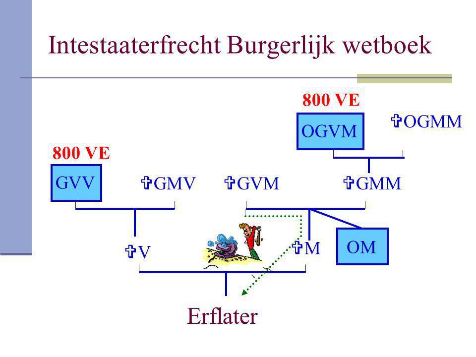 Intestaaterfrecht Burgerlijk wetboek Erflater VV MM GVV  GMV  GMM OGVM  OGMM OM  GVM 800 VE
