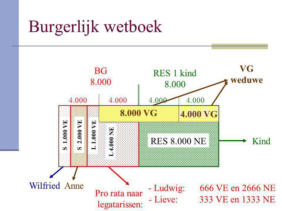 BG 8.000 RES 1 kind 8.000 4.000 VG weduwe S 1.000 VE S 2.000 VE L 4.000 NE L 1.000 VE Pro rata naar legatarissen: - Ludwig: 666 VE en 2666 NE - Lieve: