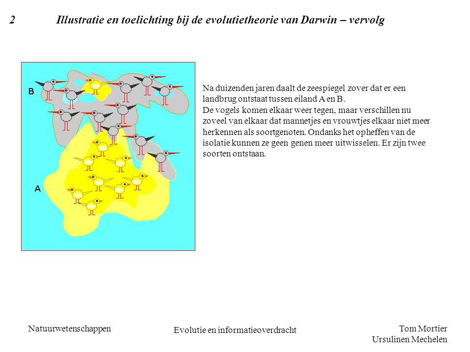 Tom Mortier Ursulinen Mechelen Natuurwetenschappen Evolutie en informatieoverdracht 2Illustratie en toelichting bij de evolutietheorie van Darwin – ve