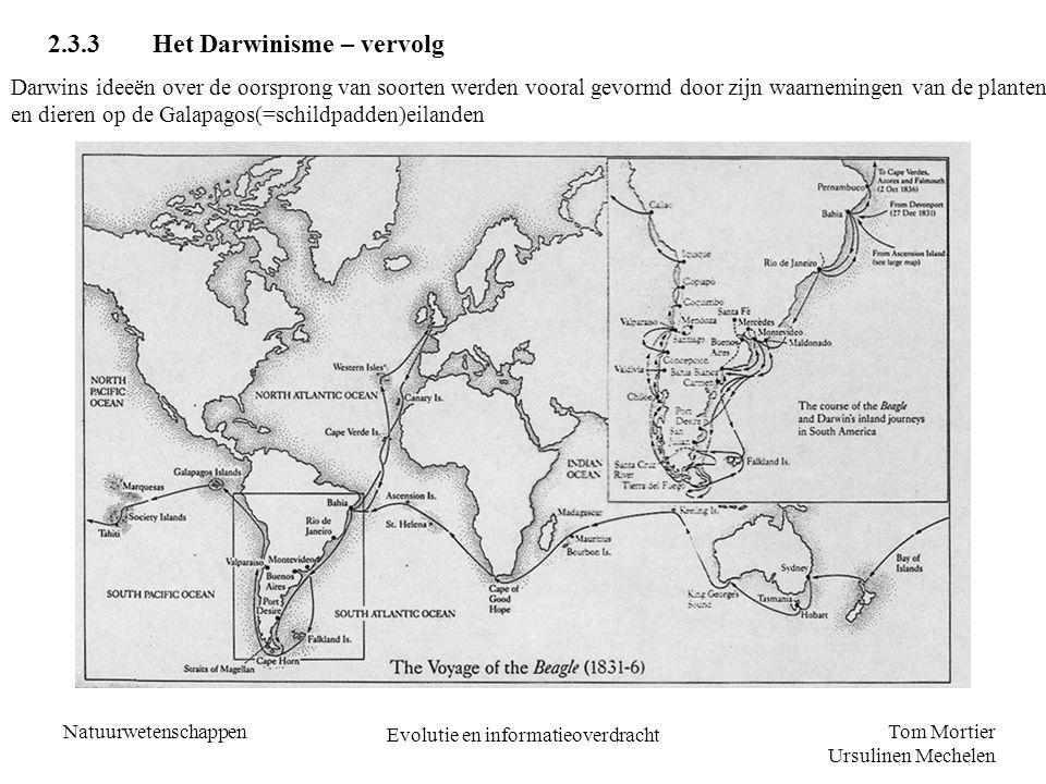 Tom Mortier Ursulinen Mechelen Natuurwetenschappen Evolutie en informatieoverdracht 2.3.3Het Darwinisme – vervolg Darwins ideeën over de oorsprong van