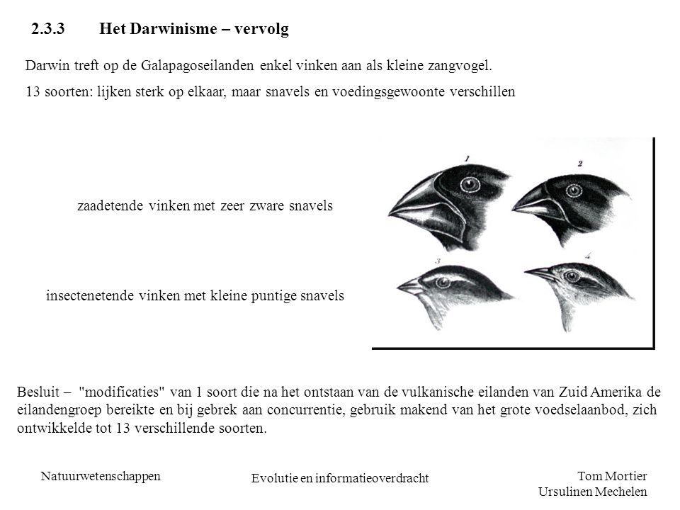 Tom Mortier Ursulinen Mechelen Natuurwetenschappen Evolutie en informatieoverdracht 2.3.3Het Darwinisme – vervolg Darwin treft op de Galapagoseilanden