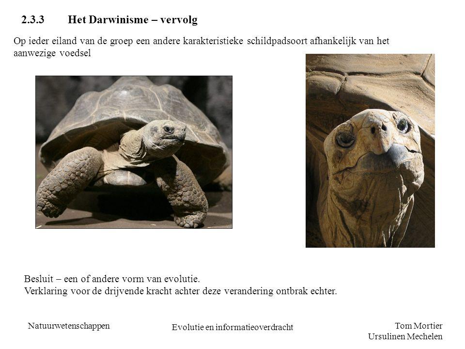 Tom Mortier Ursulinen Mechelen Natuurwetenschappen Evolutie en informatieoverdracht 2.3.3Het Darwinisme – vervolg Op ieder eiland van de groep een and