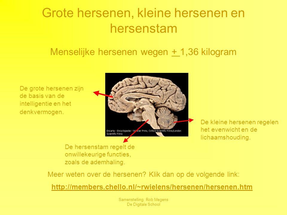 Samenstelling: Rob Megens De Digitale School Het zenuwstelsel Je lichaam zit vol telefoondraadjes : zenuwen.