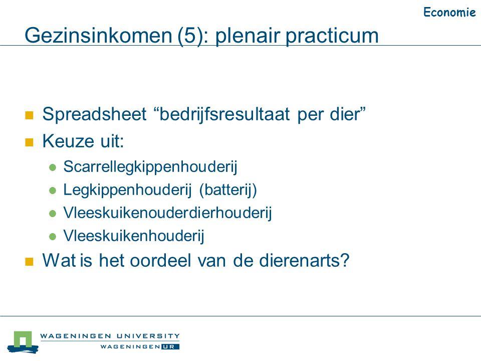 """Gezinsinkomen (5): plenair practicum Economie Spreadsheet """"bedrijfsresultaat per dier"""" Keuze uit: Scarrellegkippenhouderij Legkippenhouderij (batterij"""
