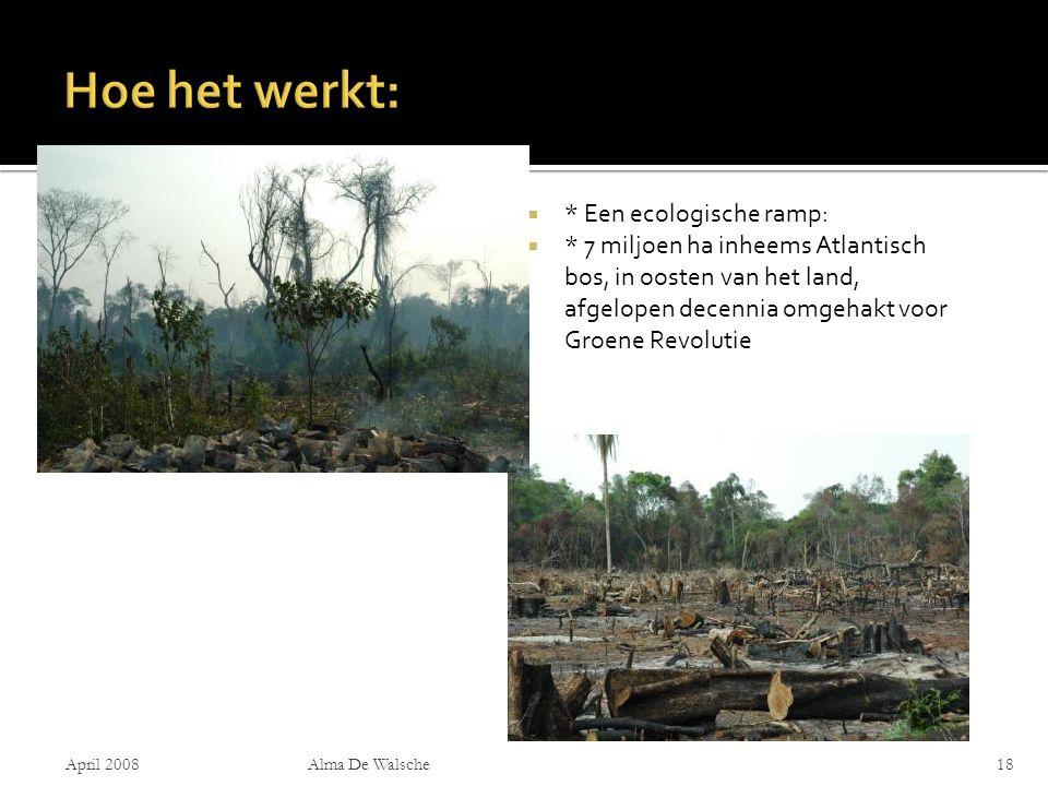  * Een ecologische ramp:  * 7 miljoen ha inheems Atlantisch bos, in oosten van het land, afgelopen decennia omgehakt voor Groene Revolutie April 2008Alma De Walsche18