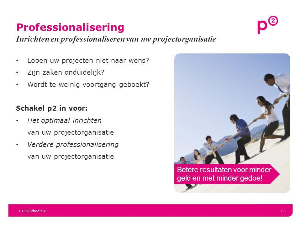 Professionalisering Lopen uw projecten niet naar wens? Zijn zaken onduidelijk? Wordt te weinig voortgang geboekt? Schakel p2 in voor: Het optimaal inr