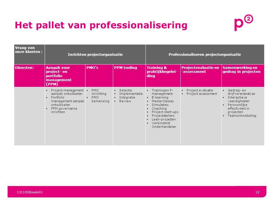 Het pallet van professionalisering Vraag van onze klanten : Inrichten projectorganisatieProfessionaliseren projectorganisatie Diensten:Aanpak voor pro