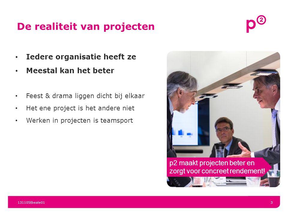 131105tbeale013 De realiteit van projecten Iedere organisatie heeft ze Meestal kan het beter Feest & drama liggen dicht bij elkaar Het ene project is