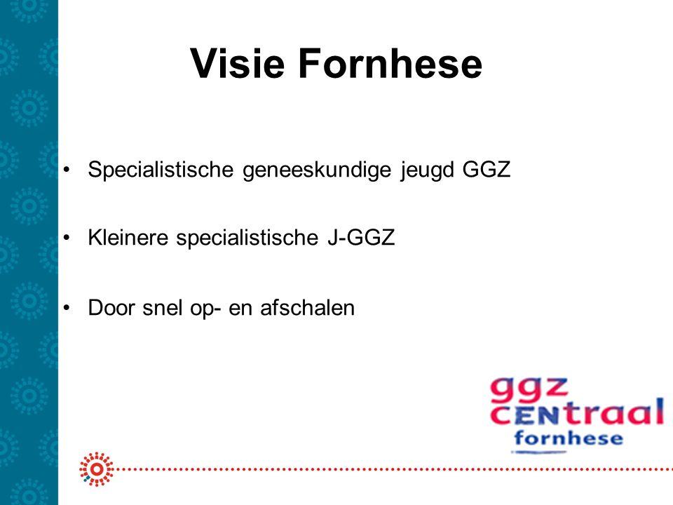 Visie Fornhese Specialistische geneeskundige jeugd GGZ Kleinere specialistische J-GGZ Door snel op- en afschalen