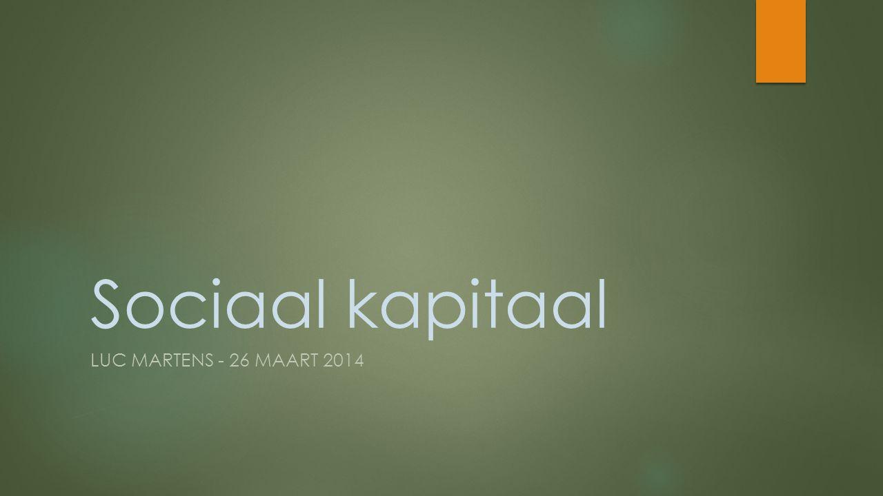 Sociaal kapitaal LUC MARTENS - 26 MAART 2014