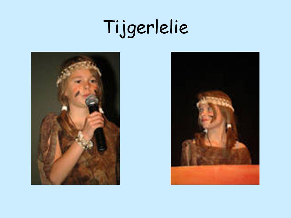 Tijgerlelie