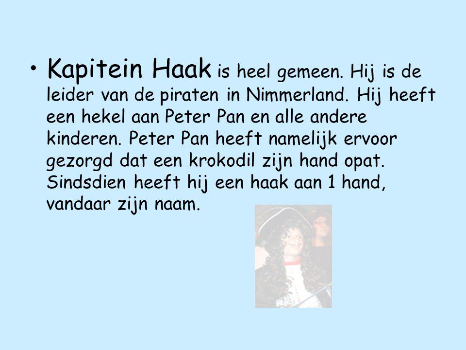 Kapitein Haak is heel gemeen.Hij is de leider van de piraten in Nimmerland.