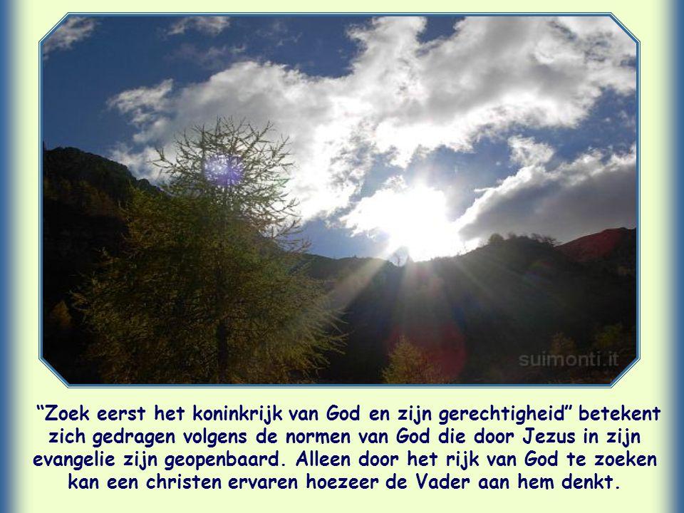 """Hij zegt: """"Zoek liever eerst het koninkrijk…"""" De betekenis van 'eerst' is: 'vóór al het andere'. Het zoeken van het rijk van God komt op de eerste pla"""
