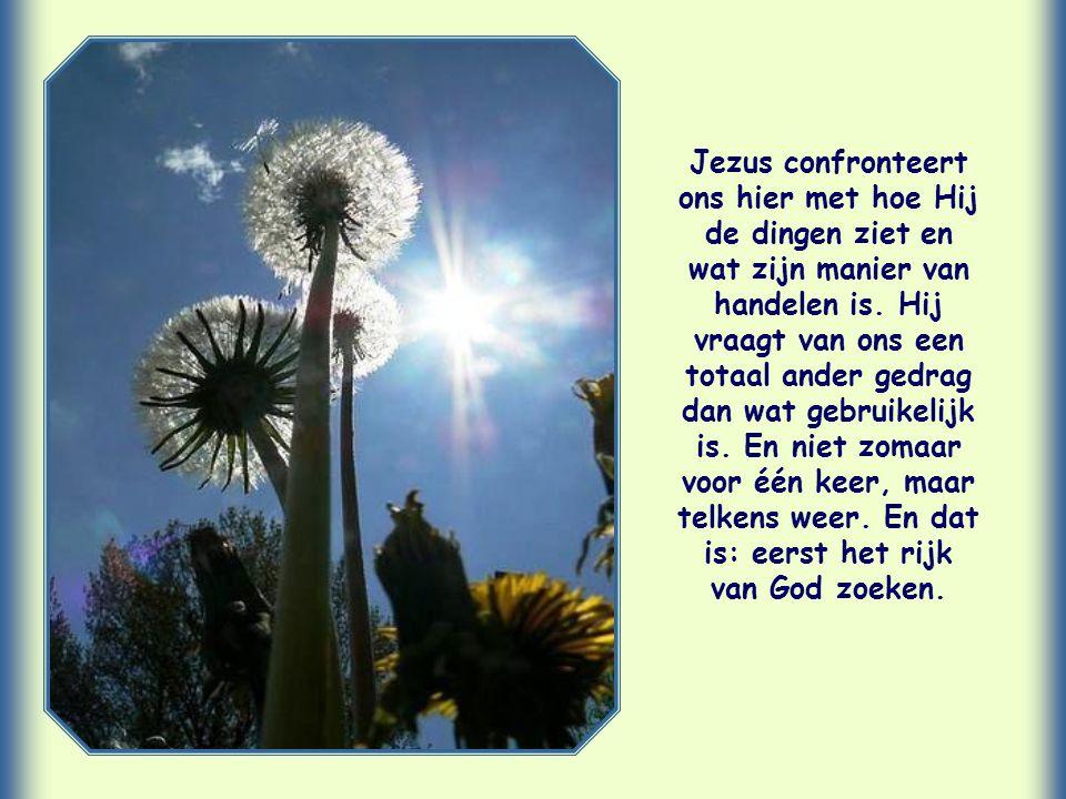 Jezus confronteert ons hier met hoe Hij de dingen ziet en wat zijn manier van handelen is.