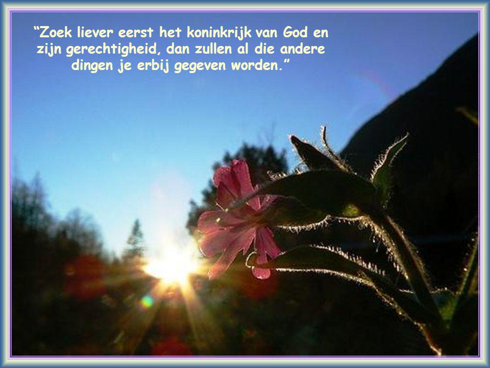 Zoek liever eerst het koninkrijk van God en zijn gerechtigheid, dan zullen al die andere dingen je erbij gegeven worden.