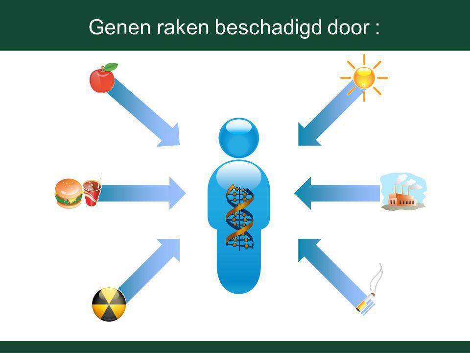 Genen raken beschadigd door :