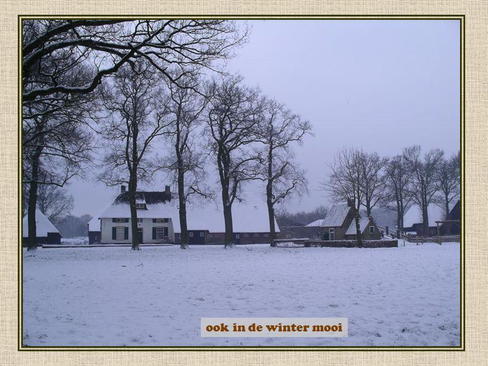 ook in de winter mooi