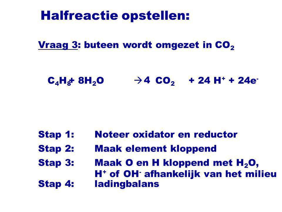 Halfreactie opstellen: C 4 H 8  CO 2 Stap 1:Noteer oxidator en reductor Stap 2:Maak element kloppend Stap 3:Maak O en H kloppend met H 2 O, H + of OH - afhankelijk van het milieu 4 + 8H 2 O+ 24 H + + 24e - Vraag 3: buteen wordt omgezet in CO 2 Stap 4:ladingbalans