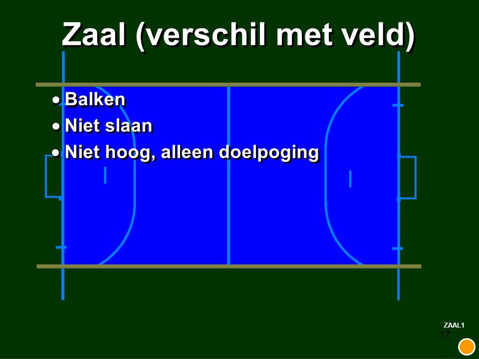 17 Zaal (verschil met veld) Balken Niet slaan Niet hoog, alleen doelpoging ZAAL1