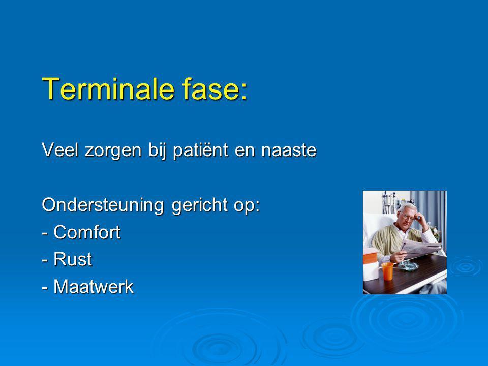 Terminale fase: Veel zorgen bij patiënt en naaste Ondersteuning gericht op: - Comfort - Rust - Maatwerk