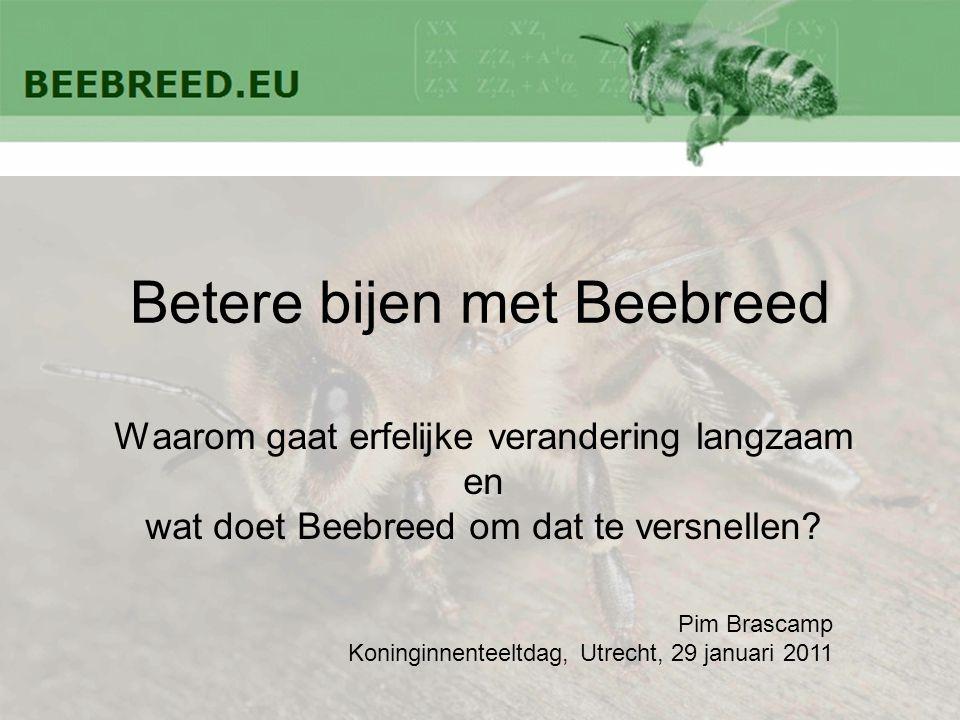 Betere bijen met Beebreed Waarom gaat erfelijke verandering langzaam en wat doet Beebreed om dat te versnellen? Pim Brascamp Koninginnenteeltdag, Utre