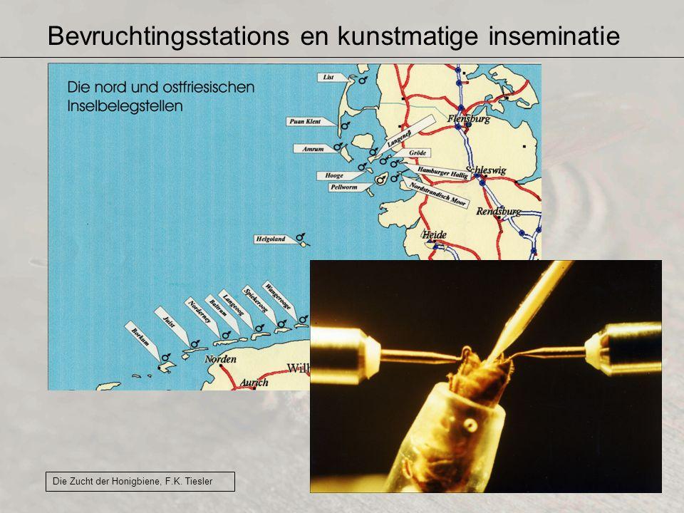 Bevruchtingsstations en kunstmatige inseminatie Die Zucht der Honigbiene, F.K. Tiesler