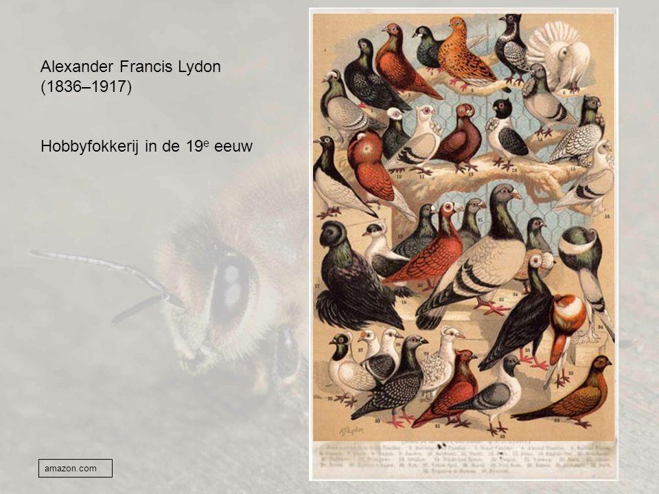 Alexander Francis Lydon (1836–1917) Hobbyfokkerij in de 19 e eeuw amazon.com