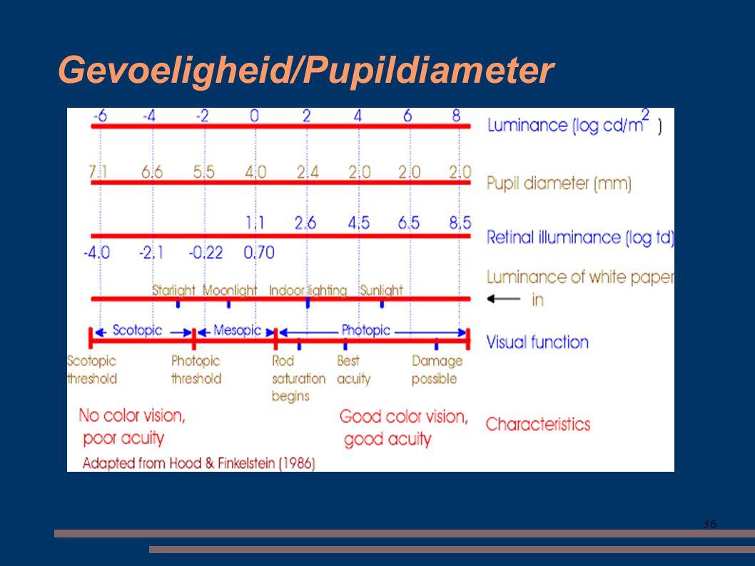 36 Gevoeligheid/Pupildiameter