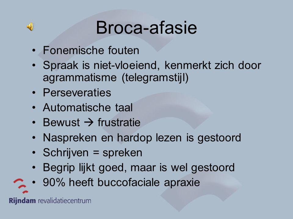 Broca-afasie Fonemische fouten Spraak is niet-vloeiend, kenmerkt zich door agrammatisme (telegramstijl) Perseveraties Automatische taal Bewust  frust