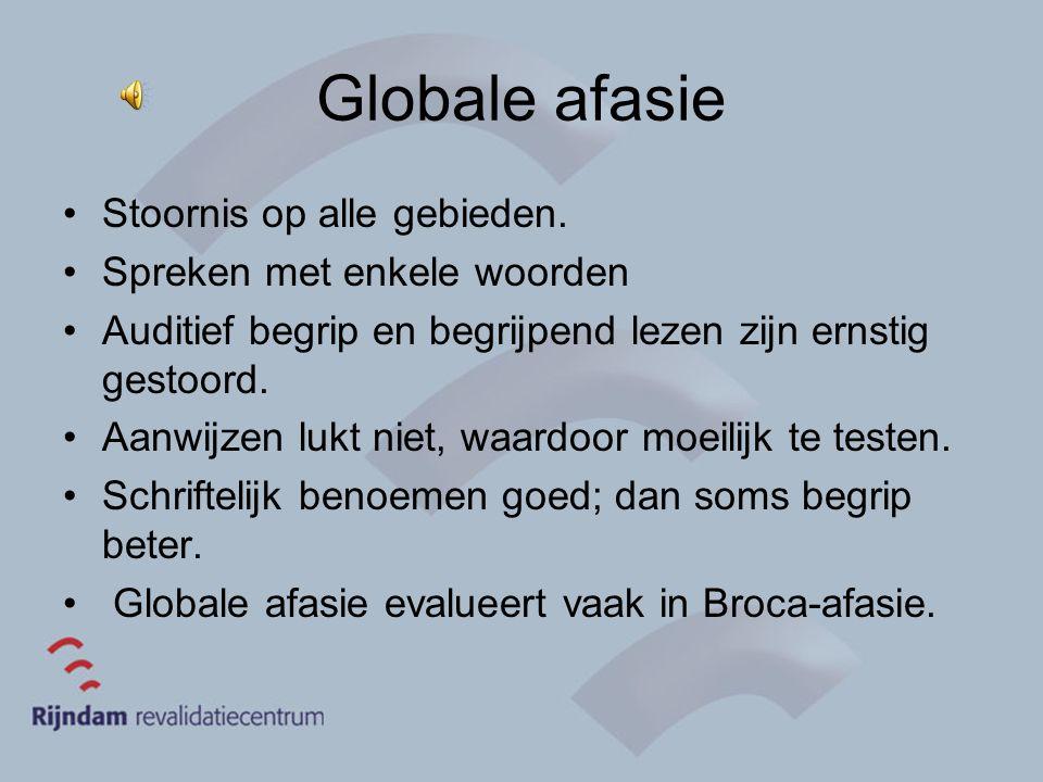 Globale afasie Stoornis op alle gebieden. Spreken met enkele woorden Auditief begrip en begrijpend lezen zijn ernstig gestoord. Aanwijzen lukt niet, w