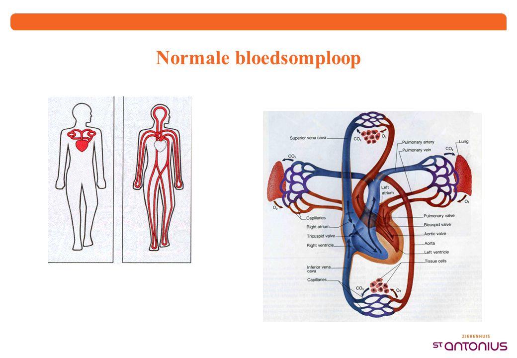 Normale bloedsomploop